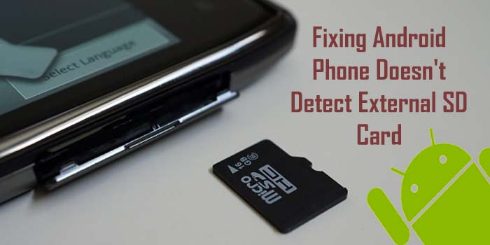 Sd Card Not Showing Up: What To Do If The Smartphone Or Tablet